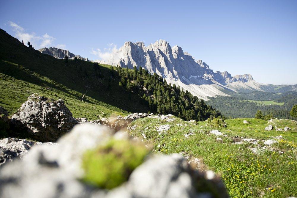 Von Gröden nach Alta Badia reicht der Natupark Puez-Geisler, und begeistert Tierfreunde gleichermaßen wie jene der Pflanzen.